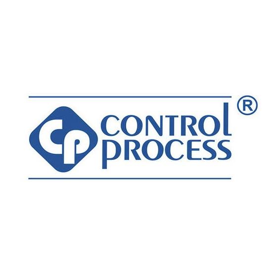 CONTROL PROCESS