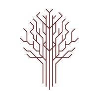 logo stowarzyszenia Klon/Jawor